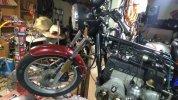 IMG-20210303-WA0032.jpg
