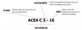 ACEA-5.JPG